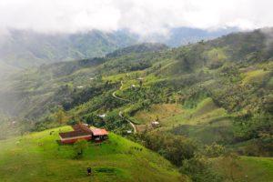 Kaffeezone in Kolumbien - Quelle: INTERCONTACT/Neptuno